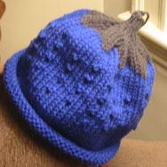 BlueberryCap.jpg